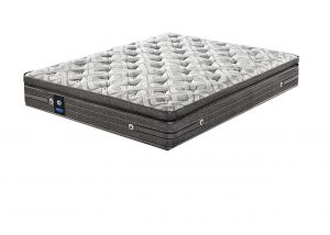 Sealy Plush Mattress